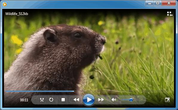 video protection sealpath